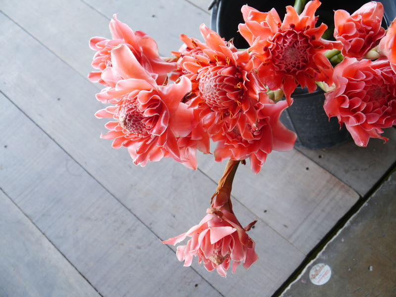 Beauty In Nature Bouquet Close-up Decoration Flower Flower Arrangement Flower Head Fragility Freshness High Angle View Home Interior Indoors  Nature No People Petal Red Red Ginger Lily Rose - Flower Still Life Table Vase