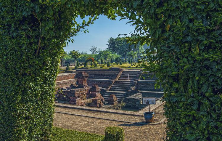 Ancient Architecture Built Structure Candi Destination Garden Hindu History KINGDOM Kolam Majapahit Mojokerto No People Patirtan Patrician Pool Ruined Temple Tikus Tourism Travel Tree Trowulan