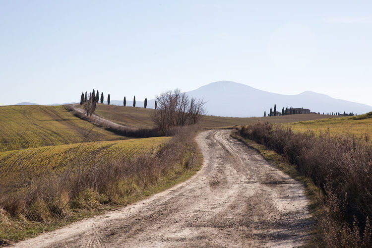 Sky Landscape Land Environment Field Nature Scenics - Nature Tranquil Scene Outdoors Tranquility Plant Beauty In Nature Grass Mountain Road Clear Sky The Way Forward Dirt Road Non-urban Scene No People Direction Crete Senesi Pienza Val D'orcia Tuscany Tuscany Hills Tuscany Countryside Cypresses Road