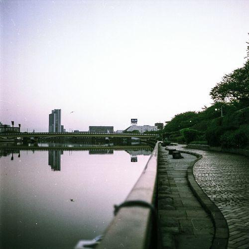 Water Sky Outdoors Tree No People Day City Sumida River Tokyo, Japan Film Photography Medium Format 6x6