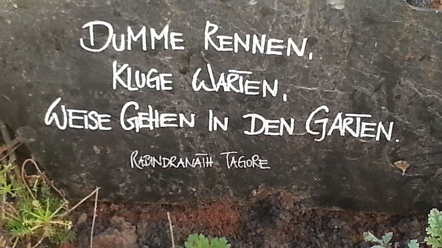 ^Stupid ones run, smart ones wait, wise ones go into a garden.^ Thanks 4 passing by. Please check out my other uploads. You might also like them. Sayings Sprichwort Garden Garten No People Stone Stein Landesgartenschau2016ÖhringenGermany Laga Öhringen 2016 Art Kunst
