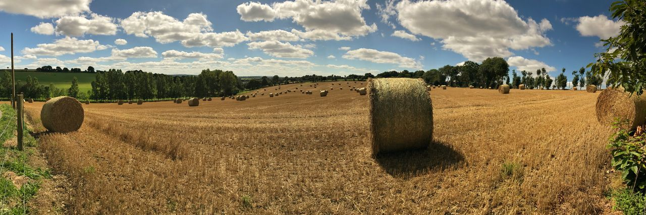 Brittany Panorama Agriculture Bale  Beauty In Nature Cloud - Sky Day Field Grass Harvest Hay Hay Bale Landscape Maël-carhaix Nature No People Outdoors Rural Scene Scenics Sky Tranquil Scene Tranquility Tree