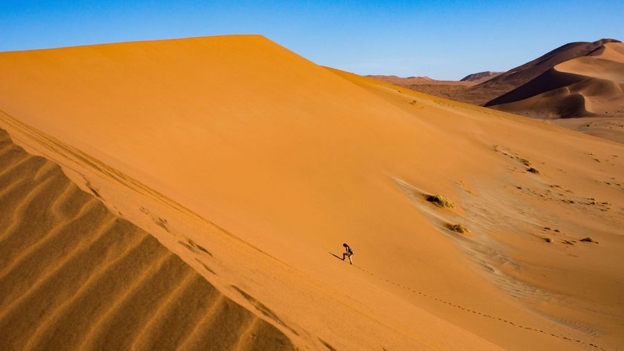 In the desert 🌵 Sand Dune Desert Sand Arid Climate Nature Landscape Tranquil Scene Tranquility Remote Scenics Beauty In Nature Outdoors Non-urban Scene Sky Extreme Terrain Clear Sky Day No People Mammal Sossusvlei Namibia Africa