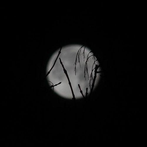 Moon Fullmoon