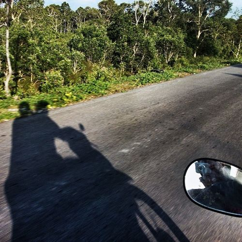 Bike Shadow Road Rearviewmirror jungleroad free
