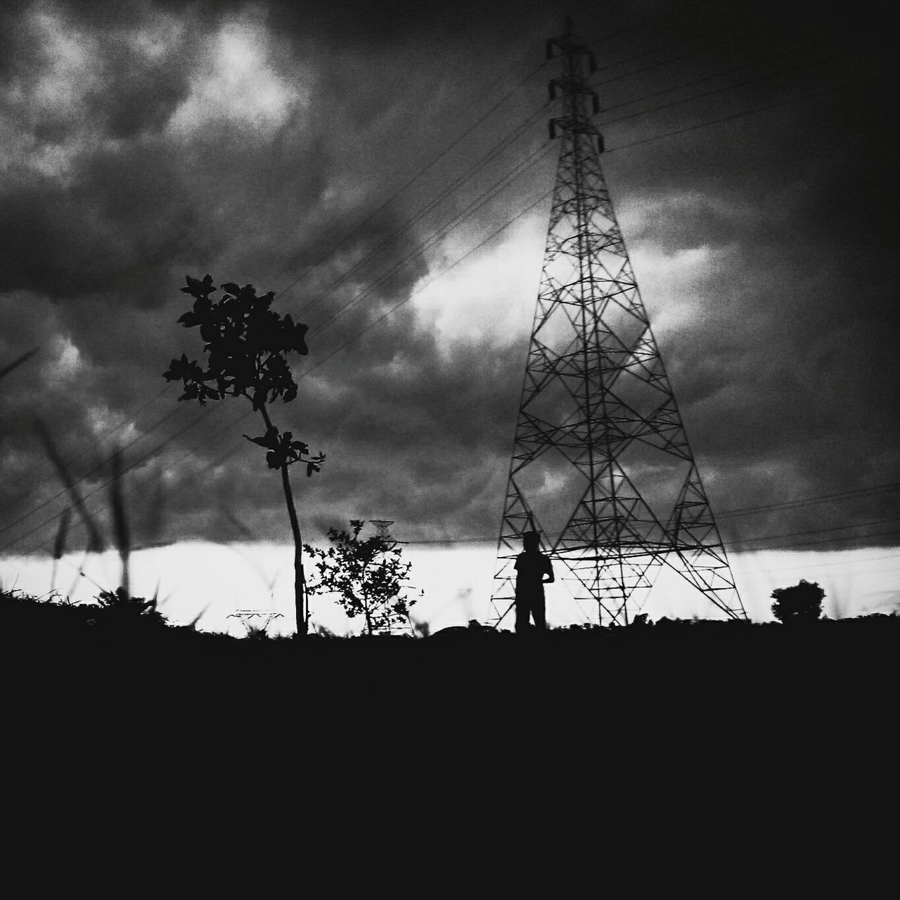 silhouette, tree, sky, electricity pylon, low angle view, cloud - sky, cable, electricity, fuel and power generation, day, outdoors, landscape, technology, nature, growth, no people