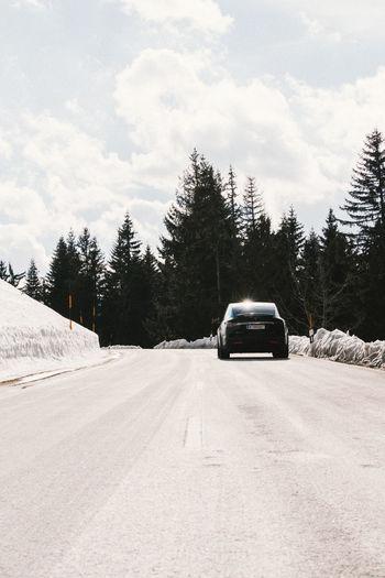 Car on snow covered trees against sky