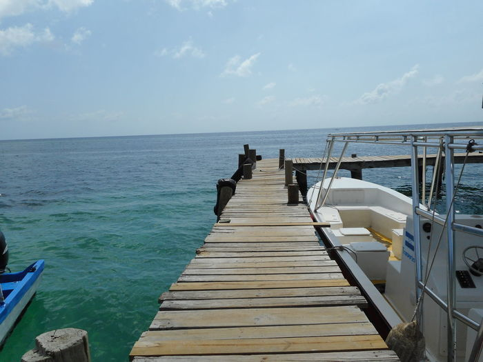 Honduras Roatan Bay Islands Beauty In Nature Day Horizon Over Water Jetty Men Nature Outdoors People Pier Scenics Sea Sky Tranquil Scene Tranquility Water Wood - Material Wood Paneling