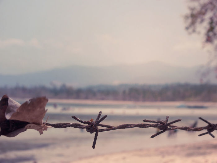 Restriction Fencing Wire Horizon Over Land Limit Limited Misterious Mistery No People Restriction Selective Focus Showcase March Eyeemmanado