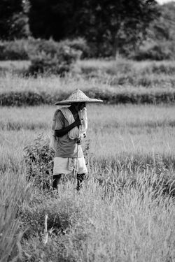 Agriculture Asian Style Conical Hat Farmer Field Farm Hat Rural Scene One Person Working Nature Occupation Outdoors Adults Only Adult People Only Women Women Rice Paddy Farm Worker One Woman Only