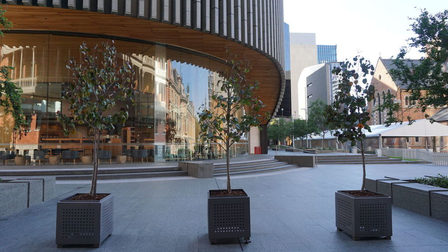 City Of Perth Library And History Centre Perth Western Australia Morningtime Architecture No People City Of Perth Library Outdoors Sky Plant Pot Tree