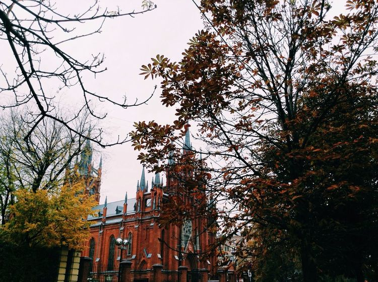 Magic autumn Autumn Architecture Nature Cityscape