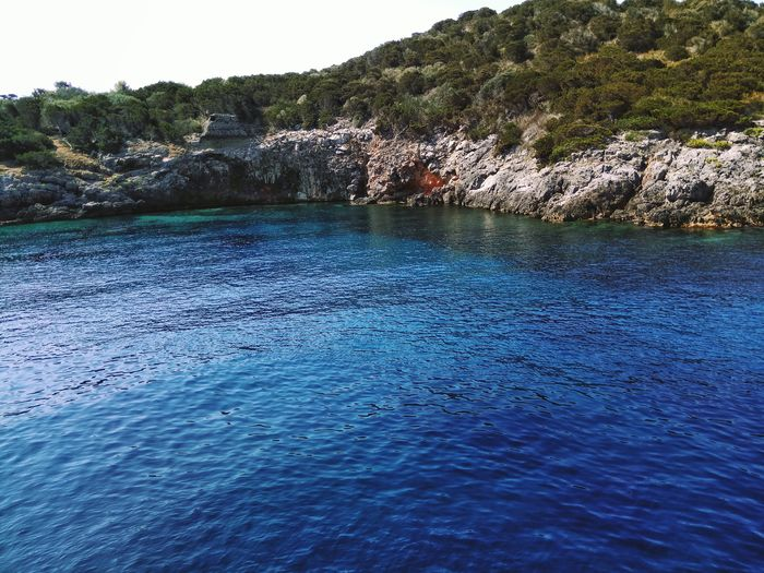 Nature Blue Water No People Beauty In Nature Pinaceae Beach Outdoors Scenics Day Tree Sea Sky Italian Sea Isola Di Giannutri Blue Color Outdoor Photography Vegetation Clear Water Clear Sea Water Clear Sea Acqua Limpida Italy Italian Seaside Italian Seaview