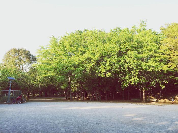 所沢 椿峰 中央公園