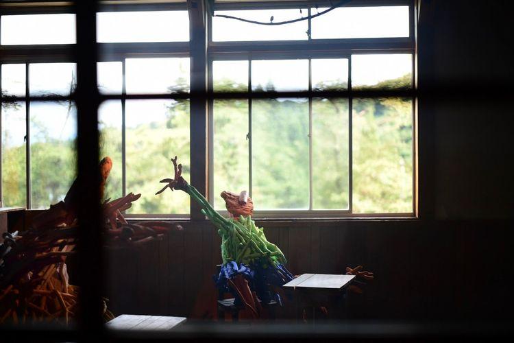 在りし日の風景。 Window Indoors  Glass - Material Plant Transparent Day Nature People Table Sunlight Sitting