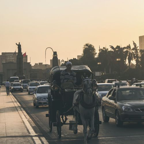 Transportation Mode Of Transport Land Vehicle Street Car Sunset City Animal Themes Road Stationary Outdoors Horse Cart Domestic Animals Real People Mammal Sky Day The Week On EyeEm