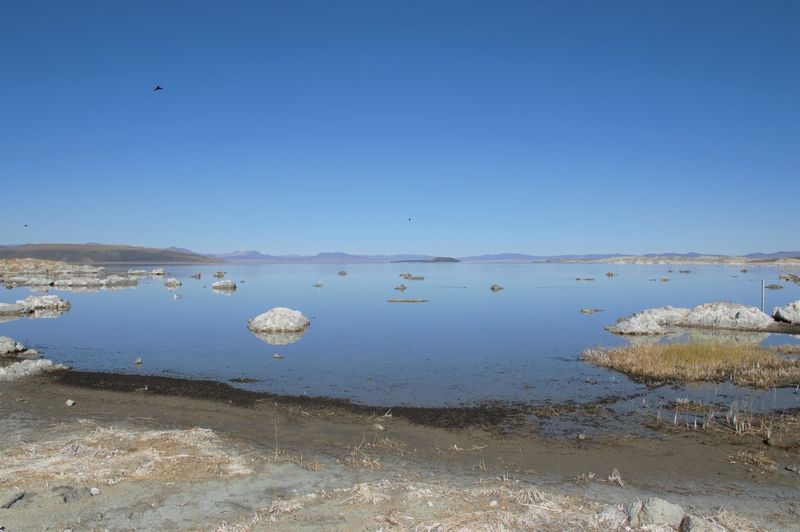 Scenic view of lake against clear blue sky