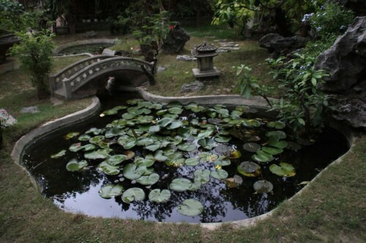 Aesthetic Bridge Fairy Garden Goals Green Indie Magical Nature Pool Water Pond Lily Photography Whimsical Scenery Vintage