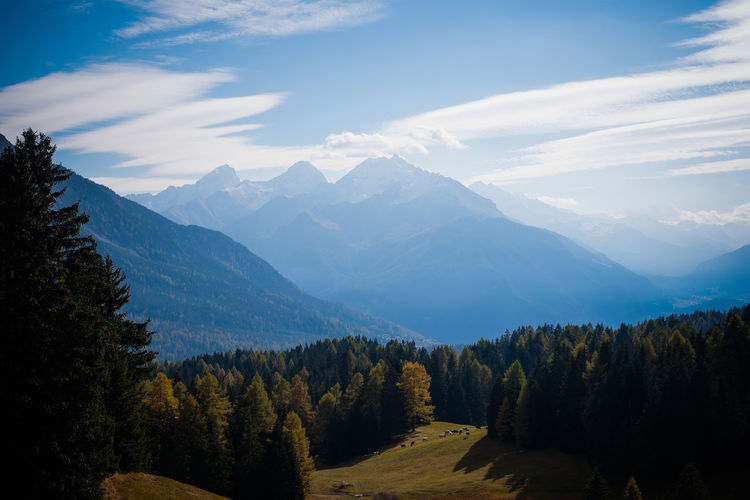 Lenzerheide | Switzerland Beauty In Nature Cloud - Sky Forest Horizontal Landscape Mountain Mountain Peak Mountain Range Nature Night No People Outdoors Pinaceae Pine Tree Pine Woodland Scenics Sky Snow Tree