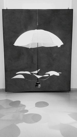 Blackandwhite Umbrella Art