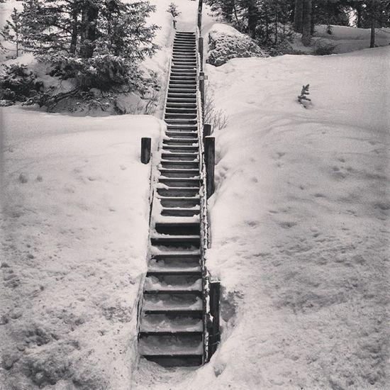 Stairway to Heaven Cookecity Montana