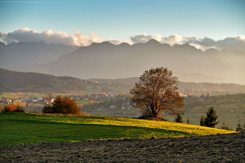 Autumn Colors Evening Light Poland Tatra Mountains Agriculture Beauty In Nature Clouds Day Fall Field Growth Landscape Mountain Mountain Range Nature No People Outdoors Peak Scenics Sky Tranquil Scene Tranquility Tree