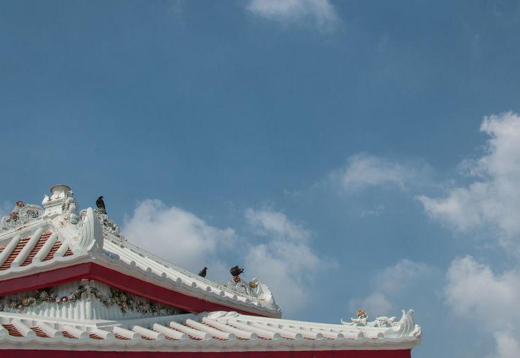 Roof Wat Thai