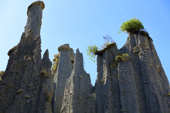"""These unusual sedimentary rock formations have evolved over thousands of years from natural falling rainwater streaming down small cracks in the rock until only these tall spires or pinnacles are left standing. This area is now famed as being one of the """"Lord Of the Rings"""", movie locations. All of this sediment rock was once upon a time submerged below the ocean & part of the sea floor, as on closer inspection, trapped seashells can be found encased within the rock structure. Cast Shadow Errosion Low Angle View Natures Beauty Natures Design New Zealand Landscape New Zealand Natural New Zealand Scenery Pinnacles Rock Errosion Spires"""