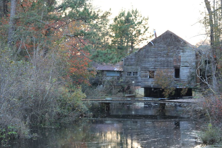 Historic Warren Mill Built Structure Tree Architecture Water Building Exterior Building Plant Reflection Waterfront Nature Lake House Day No People Outdoors Tranquility Forest Residential District Sky Mill Historical