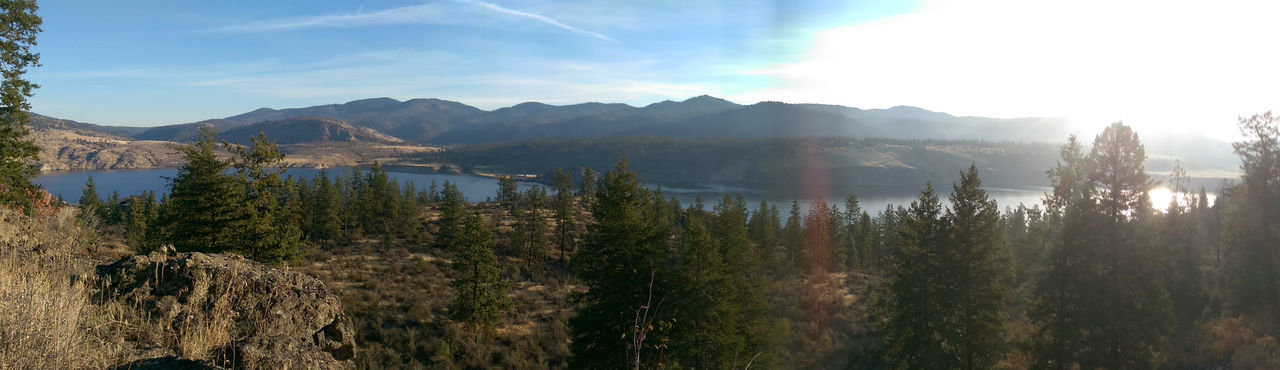 Landscape Panorama Panoramic Tree Beauty In Nature Mountains And Sky Mountain Range Lake Blue Green Nature Lake Roosevelt