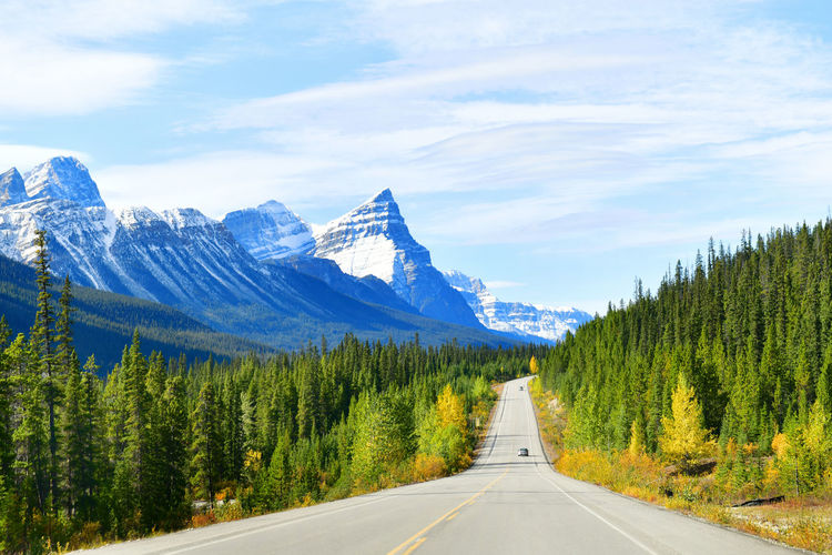 """The road 93 beautiful """"Icefield Parkway"""" in Autumn Jasper National park,Canada Mountain Scenics - Nature Beauty In Nature Tranquil Scene Road Non-urban Scene Tree Transportation Tranquility The Way Forward Mountain Range Sky Plant Direction Nature No People Day Landscape Environment Outdoors Mountain Peak Icefield Parkway Jasper National Park Viewpoint Western"""