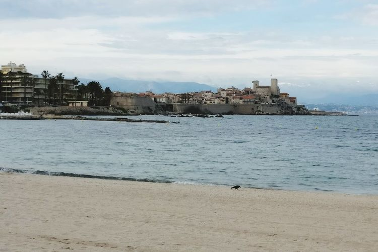 Vieil Antibes 😍☀️ Beach Sea Sand Cloud - Sky Water Outdoors Nature Tranquility Landscape No People Sky Travel Destinations Day Summer Swimming Horizon Over Water Growth Light Sunshine Mer Côte D'Azur France Beauty In Nature Tranquility Plant