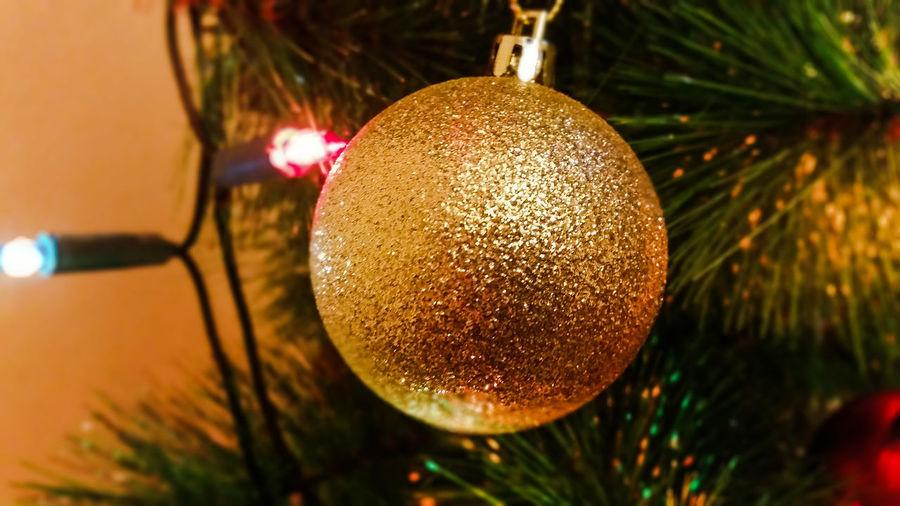 Merry Christmas everyone ! ! ! And keep on shooting 😉👍🎄🎆🎇 Christmas Tree Winter 2015 Christmas Decorations