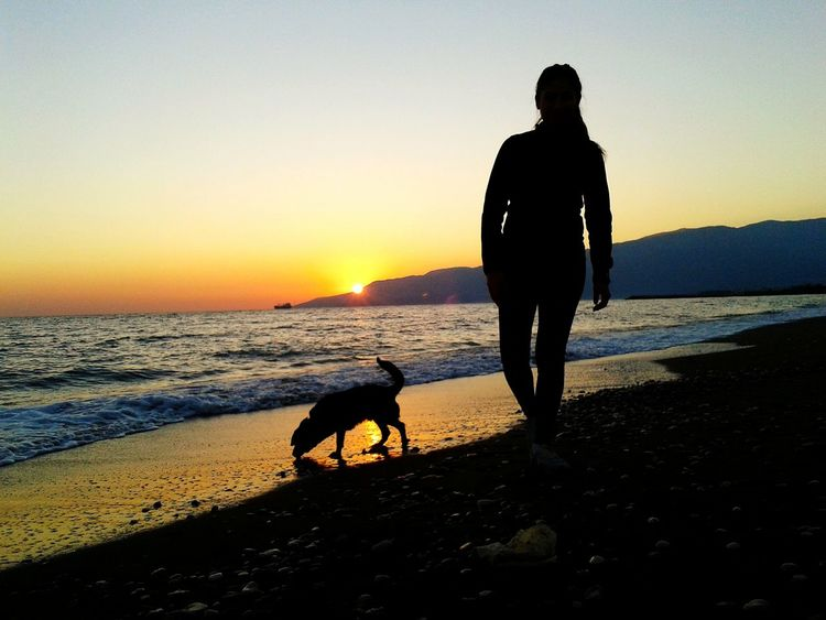 My sister and Gölge. (Like post of I am Legend :D ) Sunset Sea Beach Sky Gemi Wave Sunlight Day Enjoying Life Outdoors Animals EyeEmNewHere Pets Dog Deniz Taking Photos Silhouette Hello World Animal Themes Gokyuzu People And Animal Sister Turkey Dramatic Sky Long Goodbye