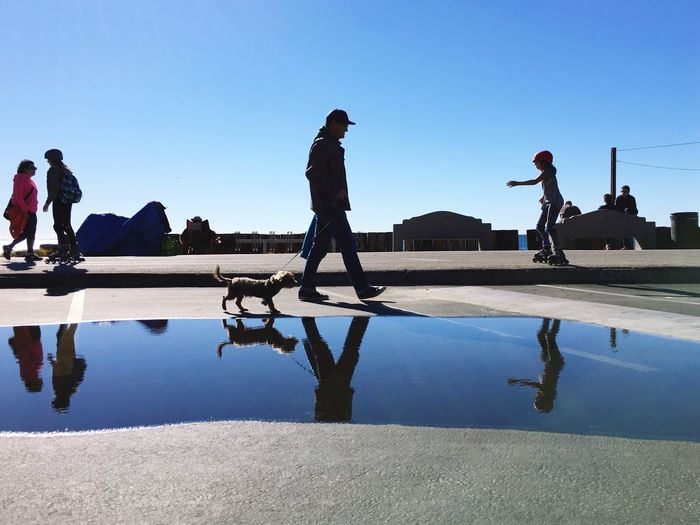 Christmas Around The World Christmas Day Walking Around Beach California Beauty THESE Are My Friends Silhouette Blue Blue Sky Perpetual Summer Dogs Water Reflection Water Reflections