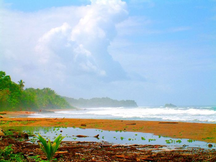 Sea Beach Water Nature Beauty In Nature Scenics Tropical Climate Tranquility Sand Outdoors Cloud - Sky Landscape Tranquil Scene people far Blue Vacations Sky Day Travel Destinations Wave Seaside Sea Seashore Seascape Photography Sea Side Manzanillo Talamanca Limon Costa Rica