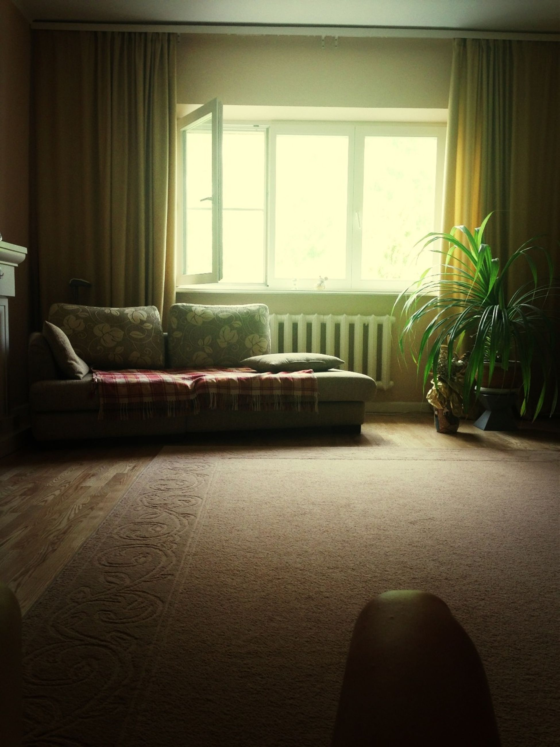 indoors, window, architecture, absence, home interior, built structure, empty, house, flooring, potted plant, table, sunlight, chair, no people, glass - material, floor, day, door, reflection, transparent