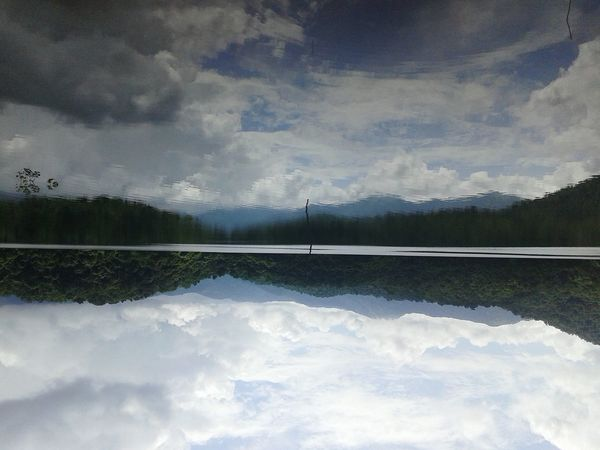 Inverted Taking Photos Hi! Check This Out Water Reflections Hello World Flipped Rotated Nature Enjoying Life