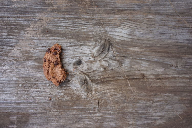 Directly above shot of chocolate cookie on wooden table