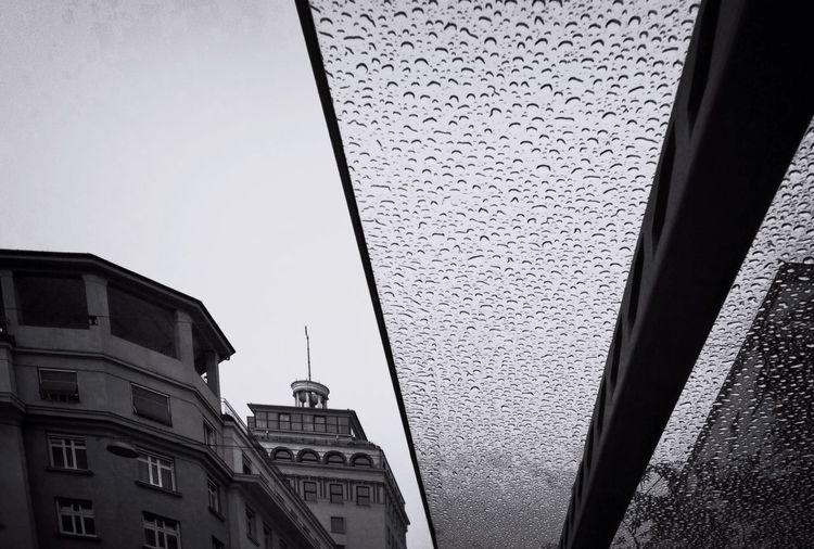 Shades Of Grey Streetphotography Black & White Streetphoto_bw Walking Around The City  City Geometry Urban Reflections Rainy Day