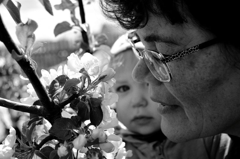 Grandmother With Grandchild By Flowers