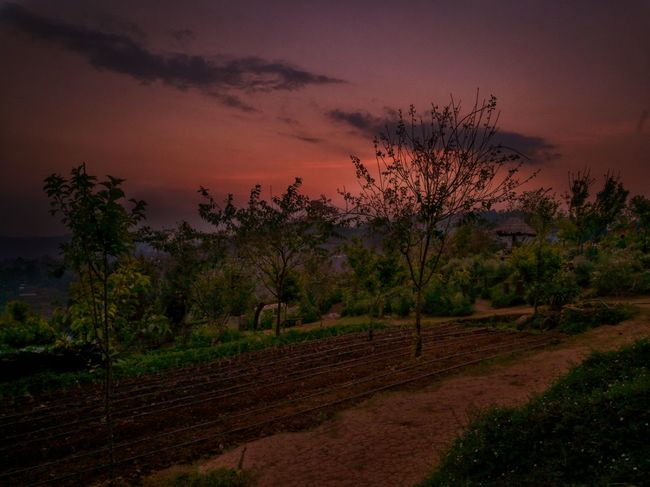 First Eyeem Photo Sundown พระอาทิตย์ตก ม่อนแจ่ม Monjam View วิว