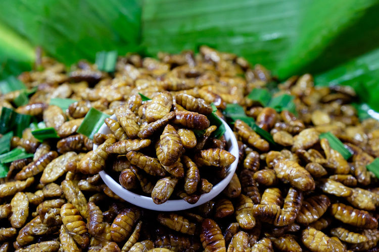Close-Up Of Insects For Sale In Market