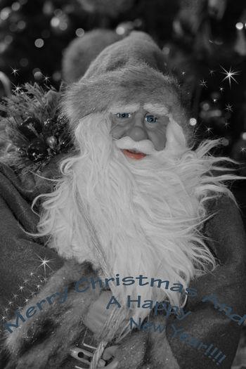 Blue Eyes Merry