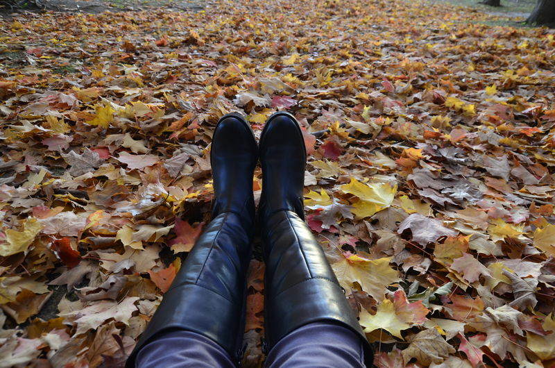 Low Section Of Woman Relaxing On Autumn Leaves In Forest