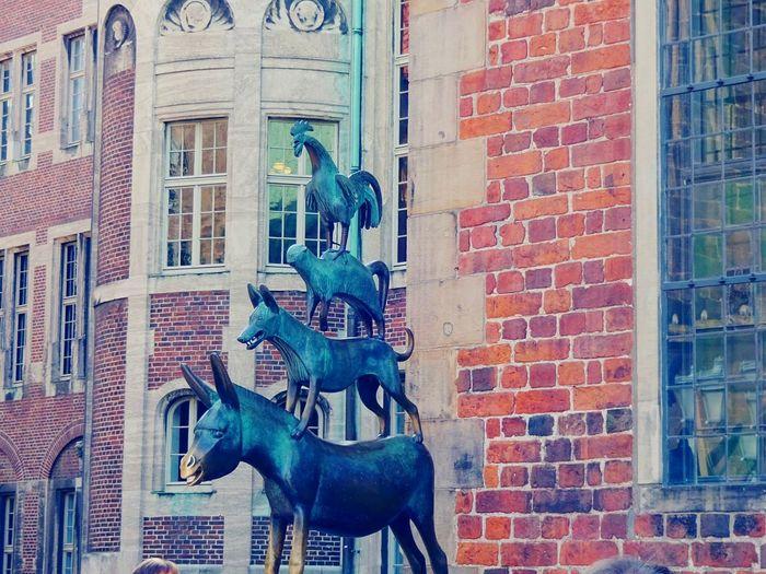 Bremen Bremen City Bremen Town Musicians Building Exterior Architecture Brick Wall Built Structure Outdoors Sculpture City Day Statue No People Animal Themes