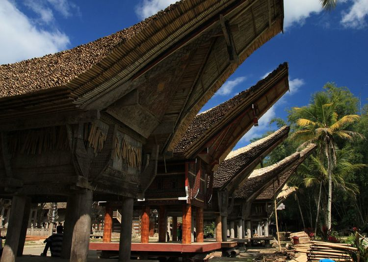Katekesu village, the indigeneous village of Toraja, South Sulawesi Indonesia. Built Structure Architecture Travel Photography Travel INDONESIA Traditional House Trip To Toraja Sulawesi Selatan Sulawesi Selatan Shot By @jgawibowo Photography By @jgawibowo Arif Wibowo Photoworks