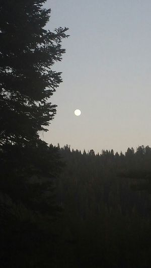 We detoured again :) ~ @ The Lake house for some Sunset goodness and a beautiful full moon ♡