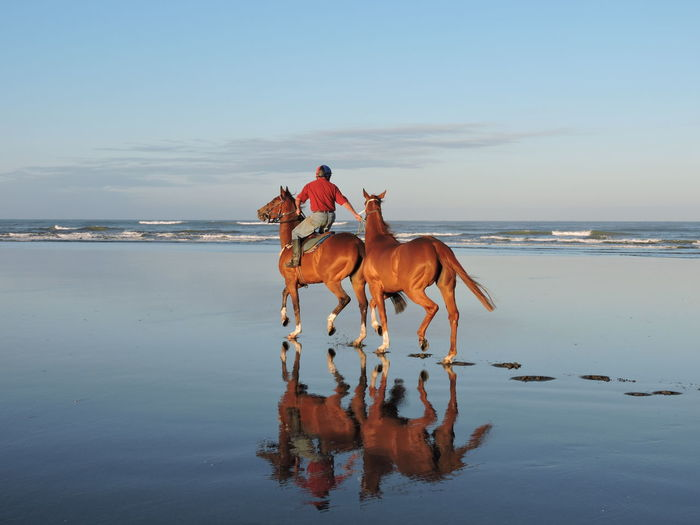 Man riding on horses at beach against sky