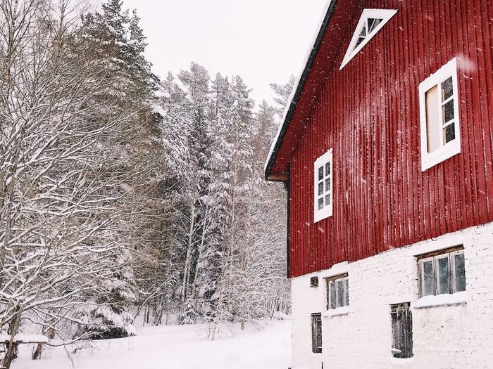 Everyday beauty ❤️ Winter Wonderland Building Barn Snow Building Exterior Cold Temperature Winter Built Structure Architecture House Day Tree Red Beauty In Nature Bare Tree No People Weather Snowing Nature Outdoors